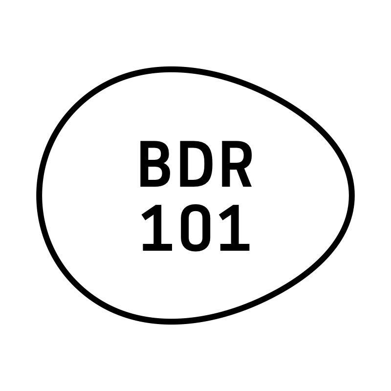 bdr-101